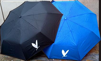 Parapluiebleu-sans-fond